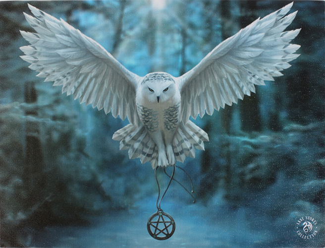 awake your magic canvas owl pentacle art print by anne stokes