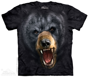 Aggressive Black Bear 3989