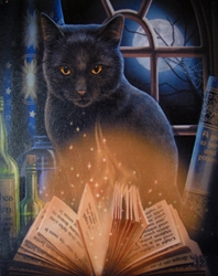 Bewitched Black Cat & Book of Shadows Canvas Art Print by Lisa Parker