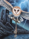 Heart of the Storm Owl Art Print by Lisa Parker