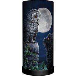 Nemesis Now Lisa Parker Round Lamp Purrfect Wisdom Owl and Black Cat Nemesis Now Lisa Parker Round Lamp Purrfect Wisdom Owl and Black Cat, cat and owl, black cat owl, owl lamp