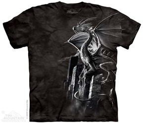 Silver Dragon Tee Shirt