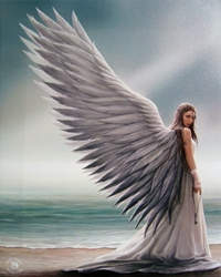 Spirit Guide Canvas Art Print by Anne Stokes Spirit Guide Canvas Art Print by Anne Stokes.Angel Print