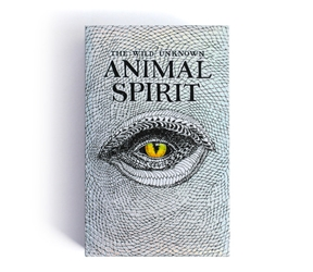 Wild Unknown Animal Spirit Deck Tarot Deck Self Published 1st Edition