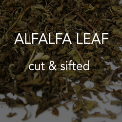 Alfalfa Leaf c/s *co