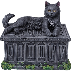 Nemesis Now Fortune's Watcher Cat Tarot Box Nemesis Now Fortune's Watcher Cat Tarot Box, cat box, tarot box