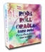 Rock and Roll Oracle Classic Rock Edition Self Published David Rosenhaus  - RRO