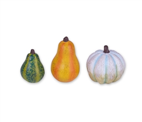 Mini Gourds - Set of three asst
