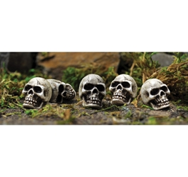 FAIRY GARDEN Miniatures Halloween Skulls Set of 5