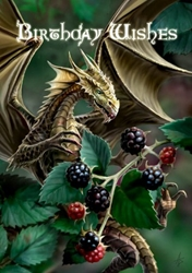 Blackberry Dragon Anne Stokes Birthday Card