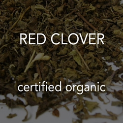 Clover, Red *co